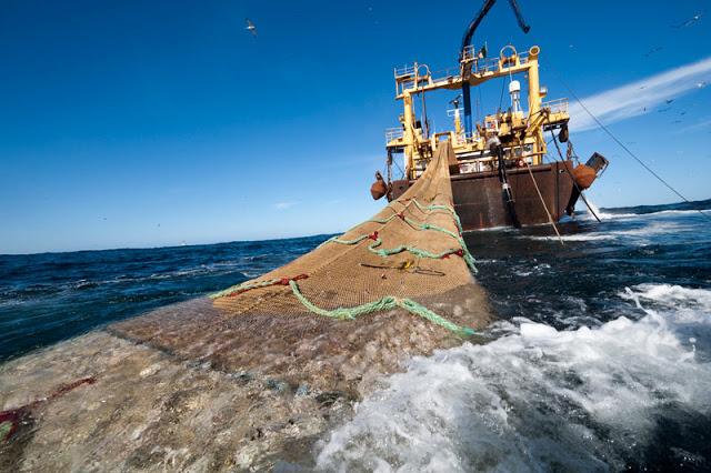 Barco faenando en las aguas de África Occidental.