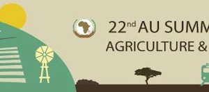 agriculture_africa